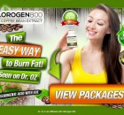 chlorogen800-burn-fat