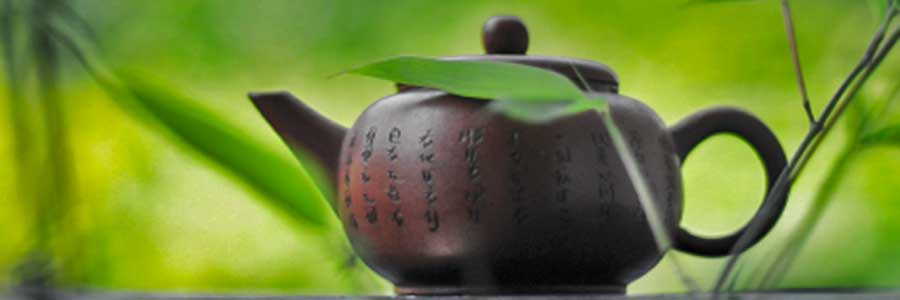 Clinical studies validate Green Tea effective Fat Burner